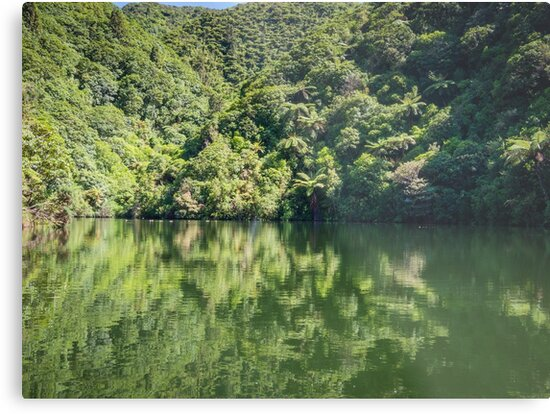 Calm Lake Water by Michael McGimpsey