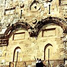 Eastern Gate to the Temple Mount by Laura Puglia