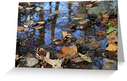 Autumn Leaves and Reflective Waters by WithStarryEyes