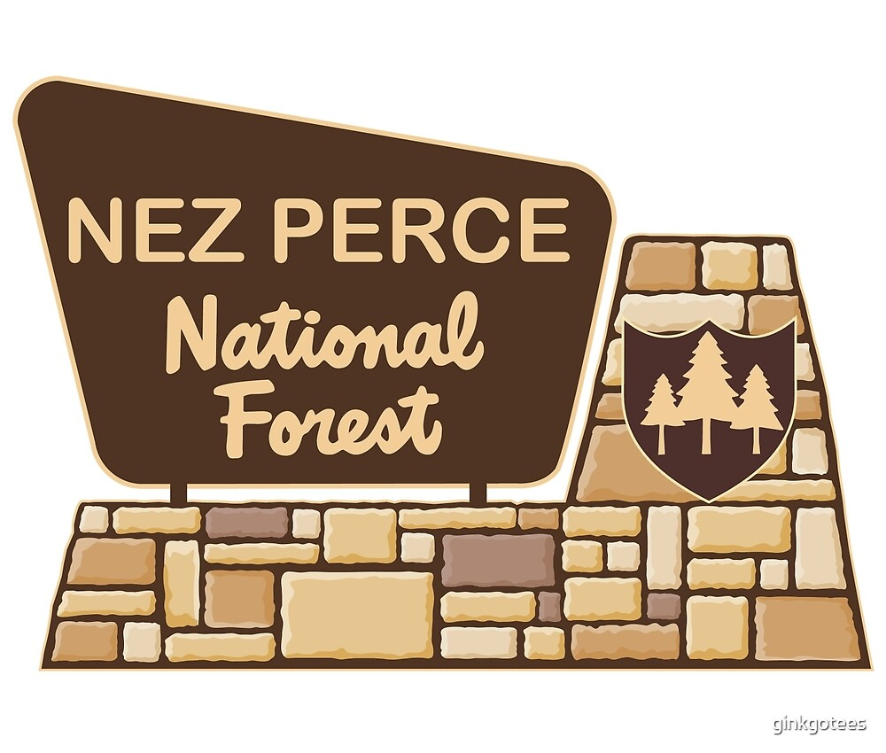 Nez Perce National Forest, by ginkgotees