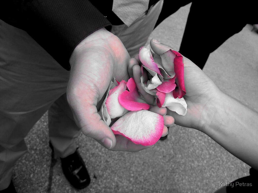 pink petals by Kathy Petras