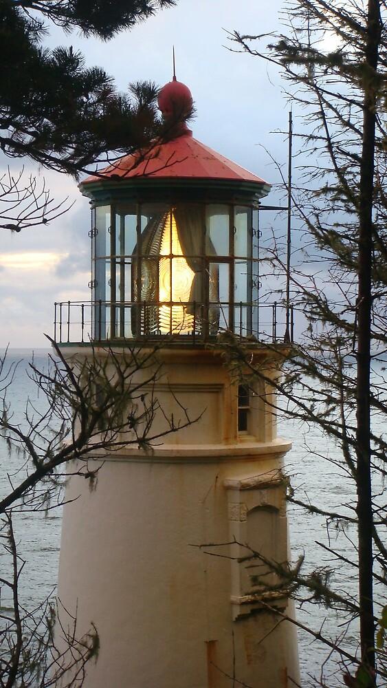HECETA LIGHTHOUSE LIT UP  by MsLiz
