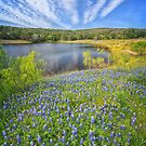 Bluebonnet Lake Skies by Owed To Nature