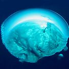bubble by AliceFrench7