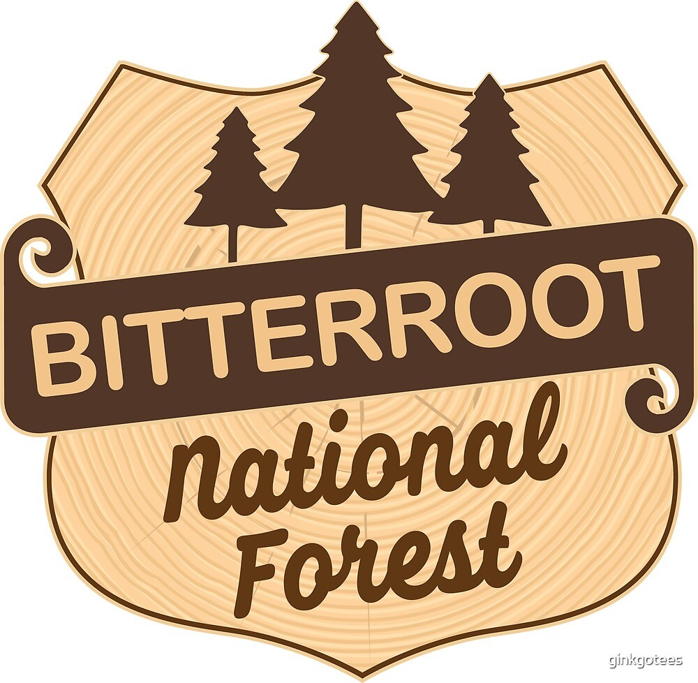 Bitterroot National Fores by ginkgotees