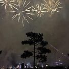 Foggy Fireworks by fairielights