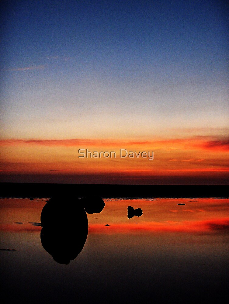 Rockpool Sunset by Sharon Davey