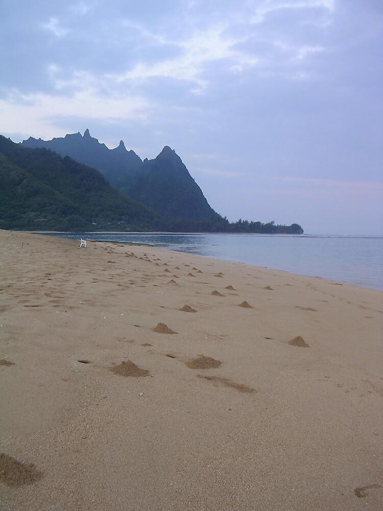 Northern Kauai beach and mountains by tunatya