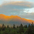 Evening's Glow by Gary L   Suddath