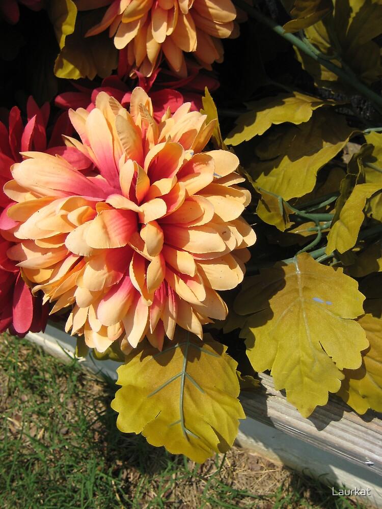 faux petals in downtown Talking Rock by Laurkat
