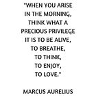 Stoic Philosophy Quote - Marcus Aurelius - What a precious privilege it is to be alive by IdeasForArtists