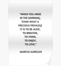 Stoic Philosophy Quote - Marcus Aurelius - What a precious privilege it is to be alive Poster