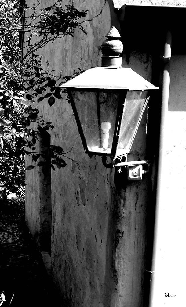 """House Lantern"" by Melle"