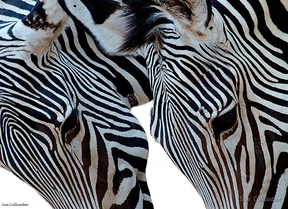 Striped Twins by Sue  Cullumber