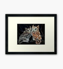 Young love on a starry night - screech owls Framed Print