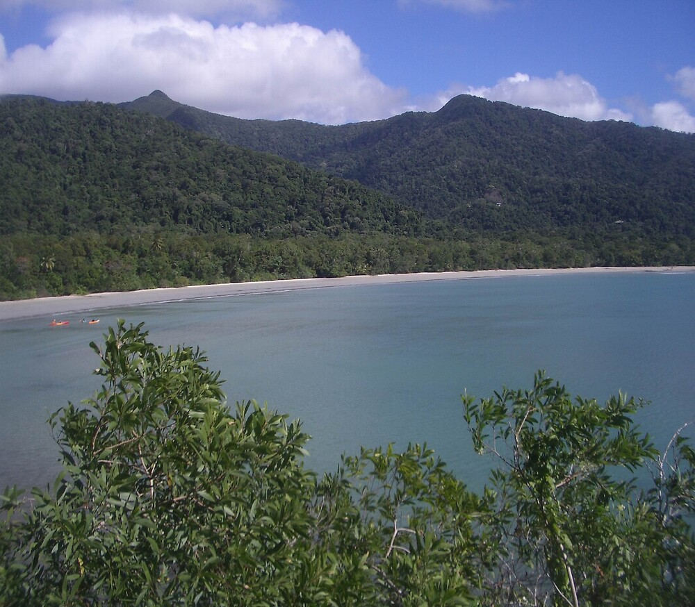 Tropical North Queensland, Daintree Rainforest by wpcrighton
