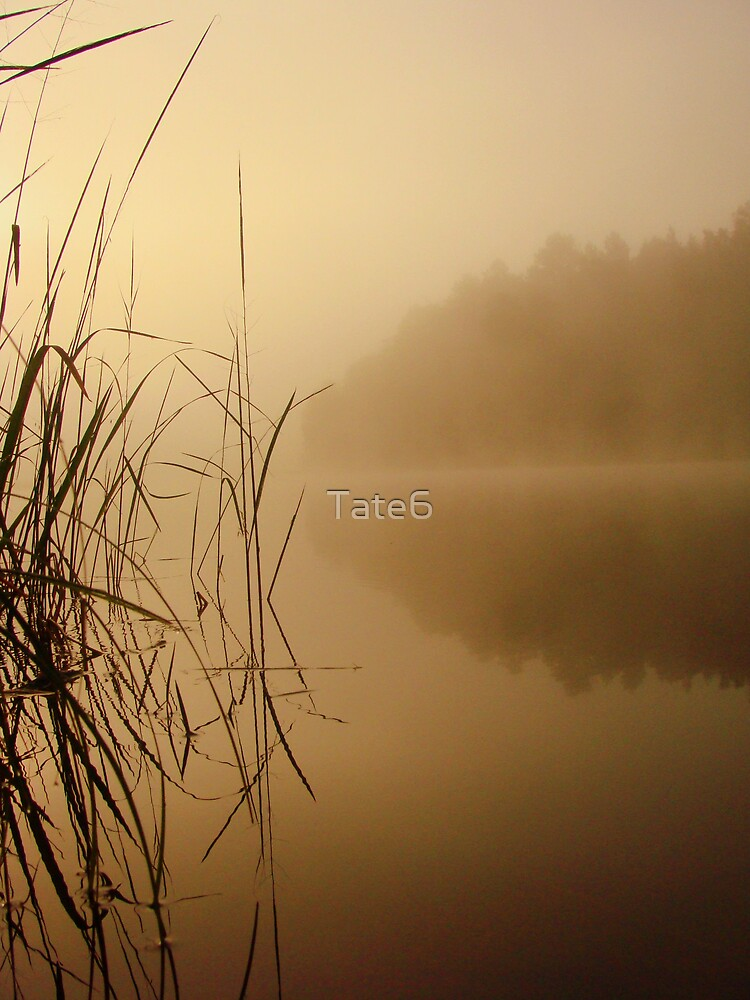 Nature and Silence by Tate6