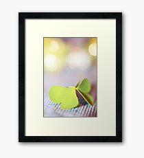the butterfly 04 Framed Print