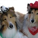 Two Handsome Collie Cowpokes by Jan  Wall