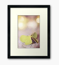 the butterfly 13 Framed Print