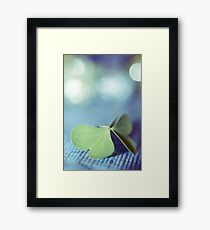 the butterfly 14 Framed Print