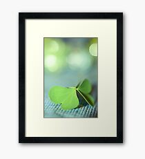 the butterfly 16 Framed Print