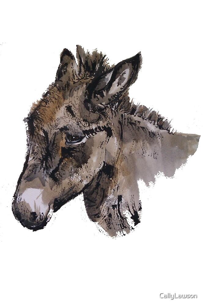 Donkey Tom by CallyLawson