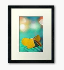 the butterfly 19  Framed Print