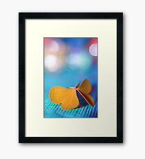 the butterfly 21 Framed Print