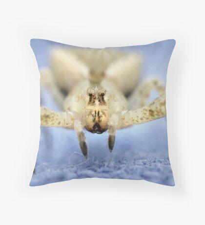 Crab Spider Close Throw Pillow