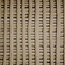 Bamboo by Buckwhite