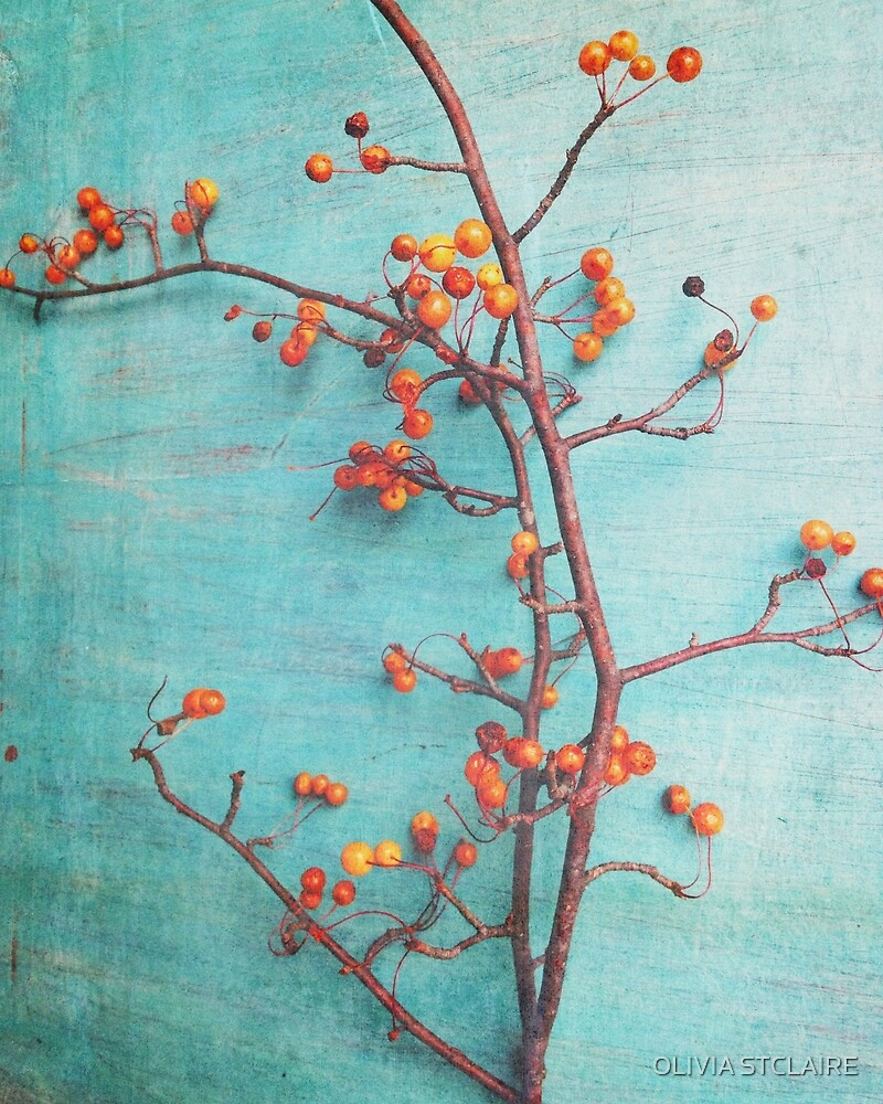 She Hung Her Dreams on Branches by OLIVIA JOY STCLAIRE