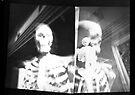 Pinhole Bones #3..... composite by Juilee  Pryor