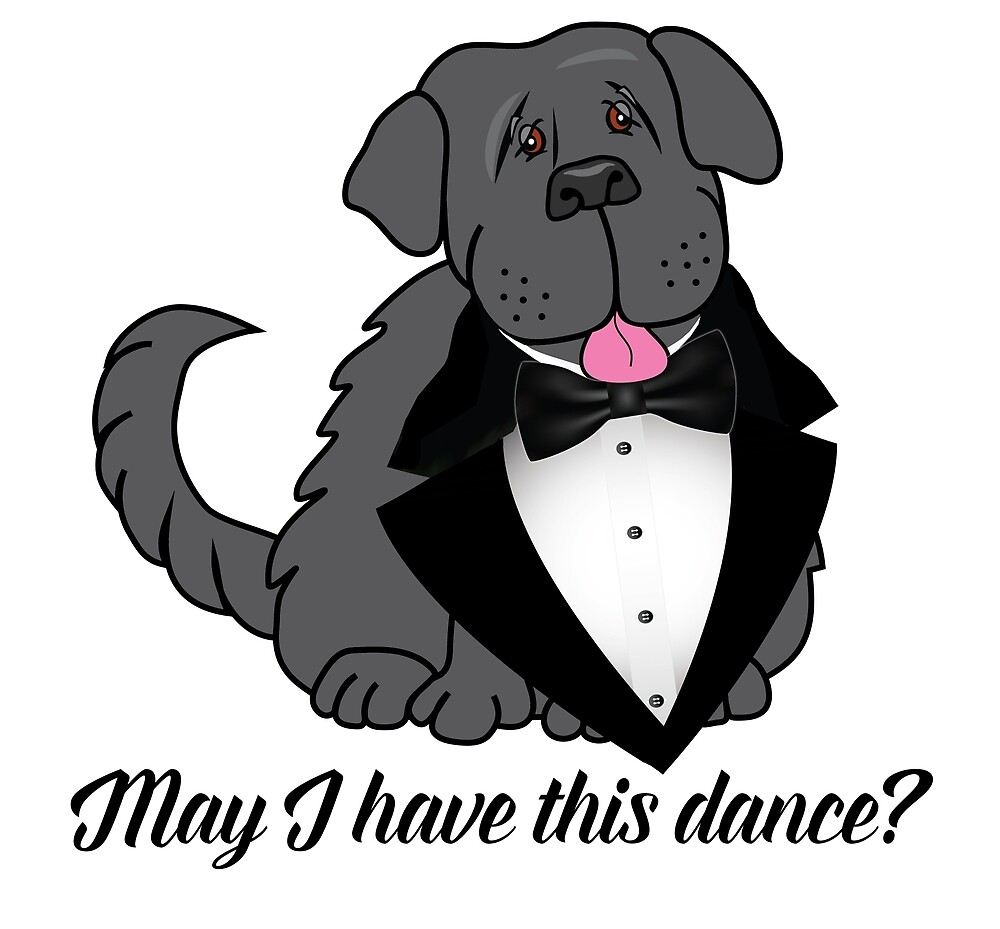May I have this Dance? by Christine Mullis