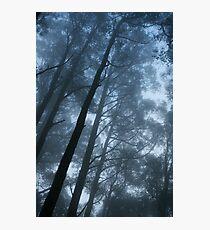 Saturday Fog Photographic Print