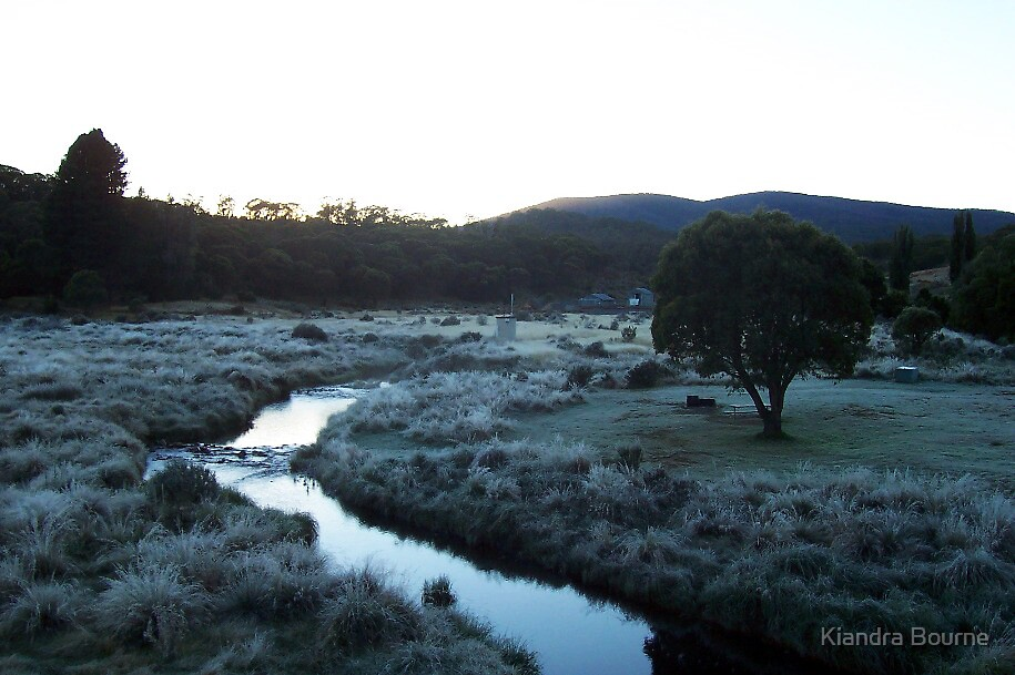 Chilly Morning  by Kiandra Bourne