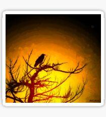 Crow Resting in Sunset Sticker