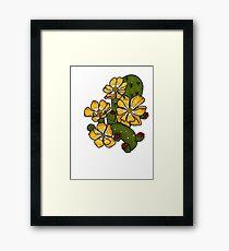 Opuntia Elata Framed Print