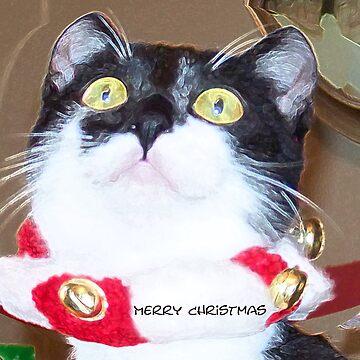 Christmas Wonder by DanceswithCats