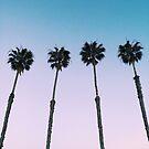 California Palm Tree Sunset by AlexandraStr