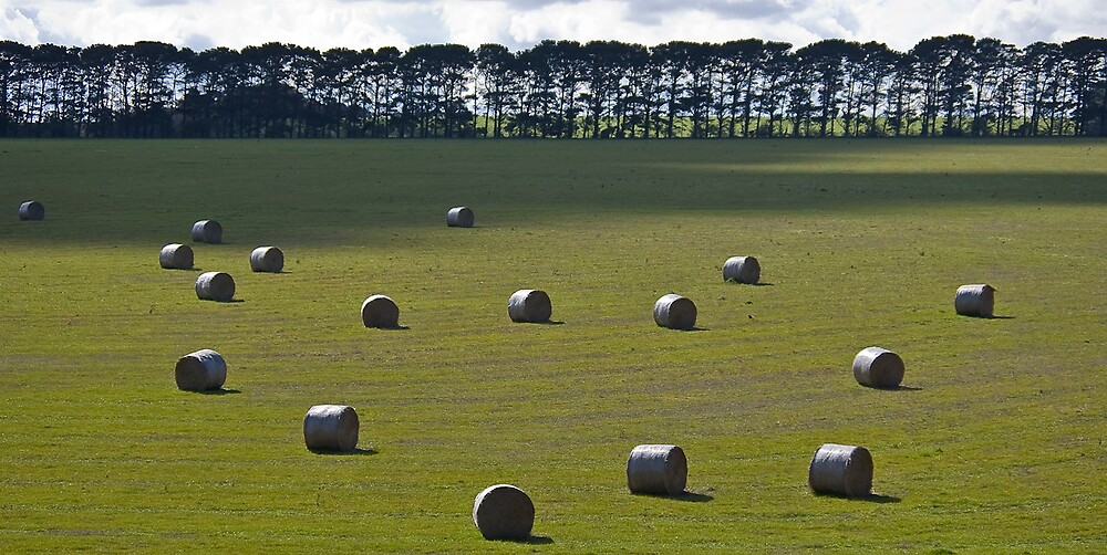 Grass bales by Akif  Kaynak