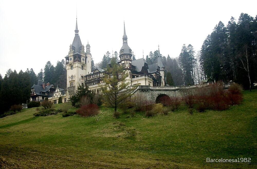 Sighisoara Castle, Romania by Barcelonesa1982