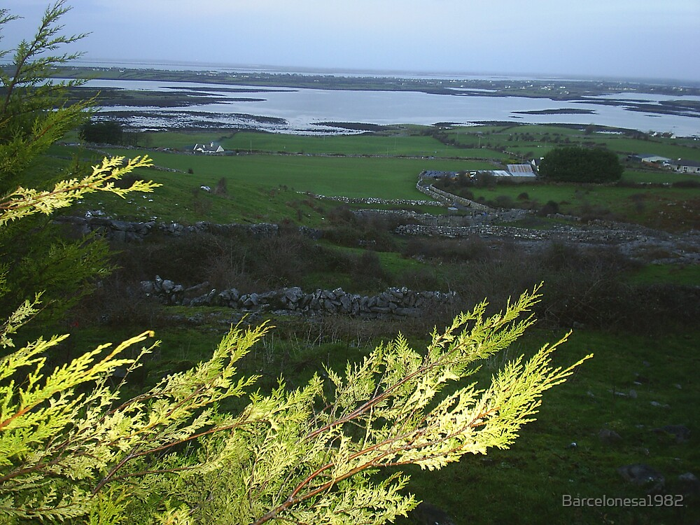 Western Irish coast by Barcelonesa1982