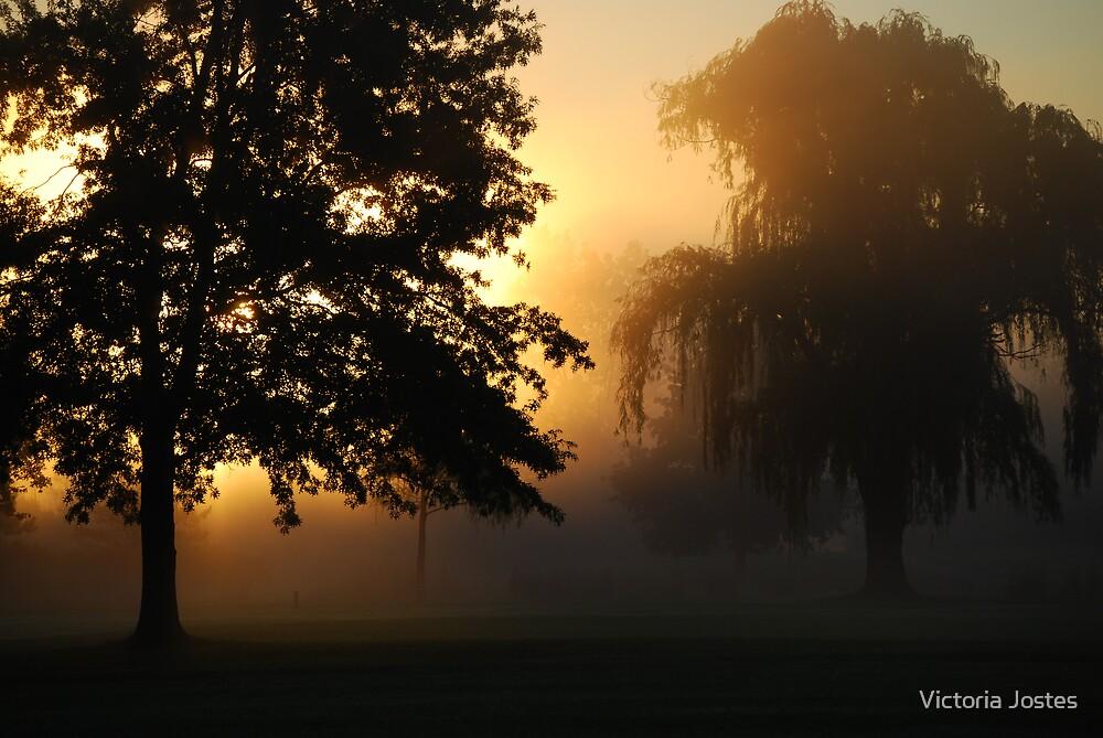 Sunrise Magic by Victoria Jostes