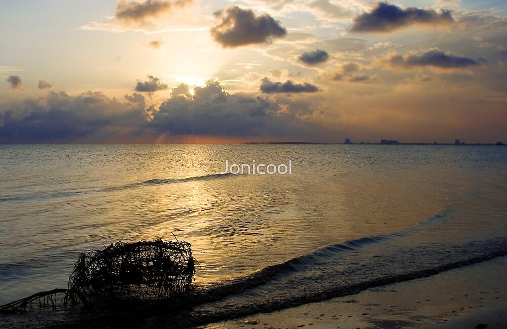 Washed Ashore by Jonicool