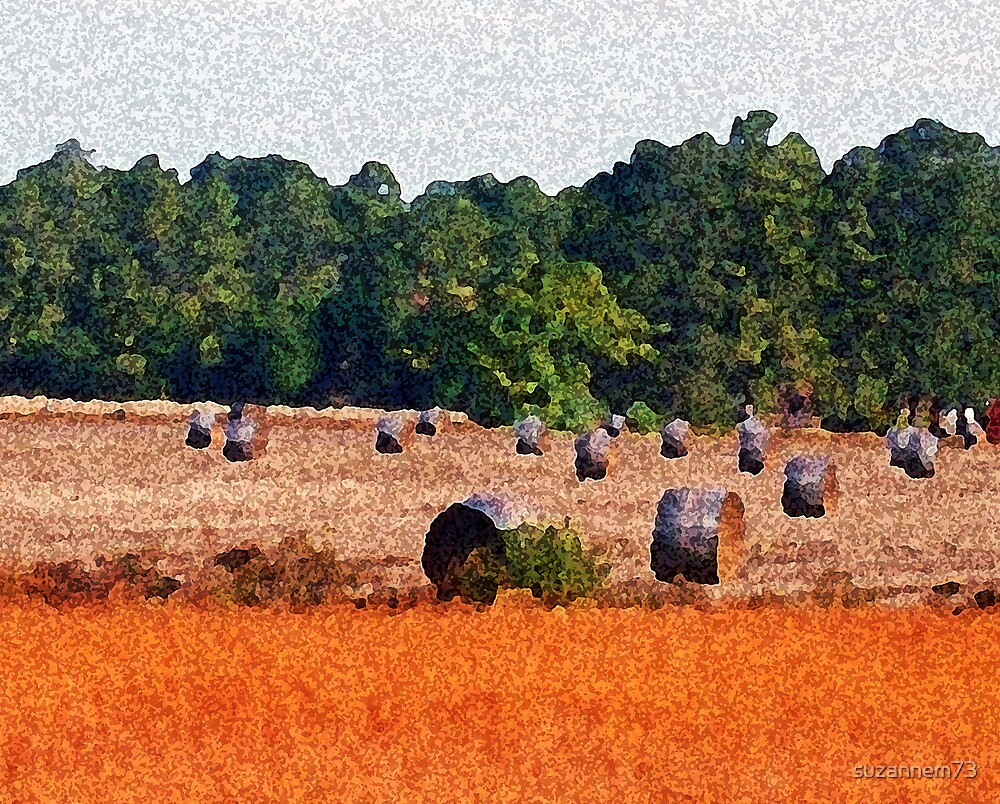 Harvest Time by suzannem73