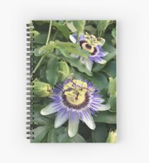 Local flora, 15th and S Street NW, Washington, DC Spiral Notebook