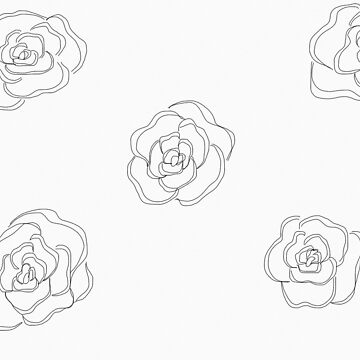 Black and white roses by Tarasadventure
