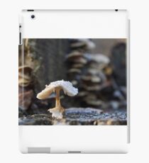 From the frog's point of view iPad Case/Skin