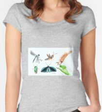 Tropical Bugs Women's Fitted Scoop T-Shirt